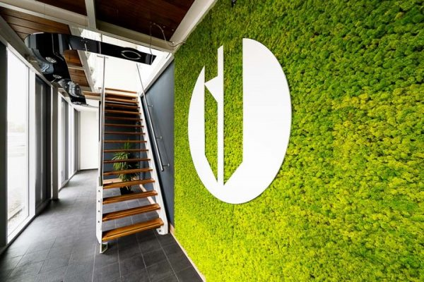 Suite Moss mos wandbekleding - Dijkmans - Duurzaam en slim (af)bouwen